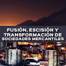 Fusion Transformacion Y Escision De Sociedades Mercantiles