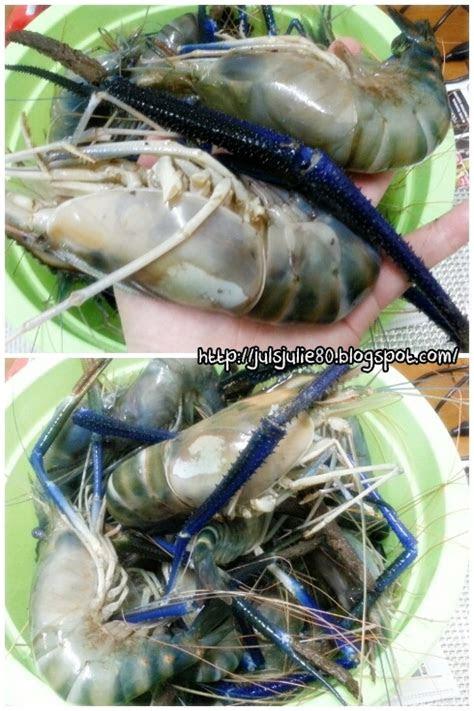 umai  sagu udang galah  udang sepit biru masak lemak