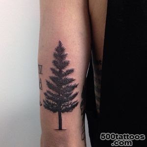 Tree Tattoo Designs Ideas Meanings Images