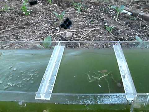 Above Ground Ponds