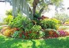 Idea For Gardens Designs   Garden Idea