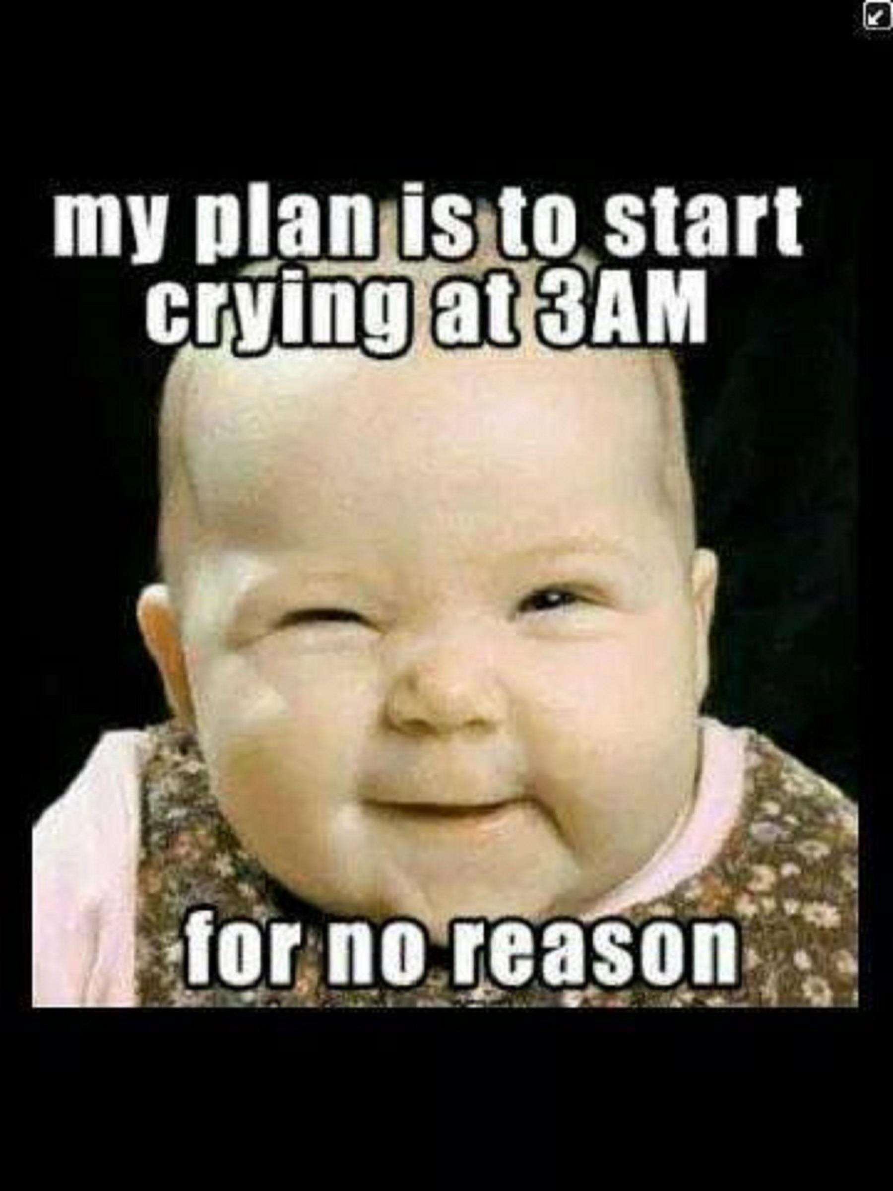 Cute Funny Baby Sayingmy Plan Is To Start Crying At 3am For No