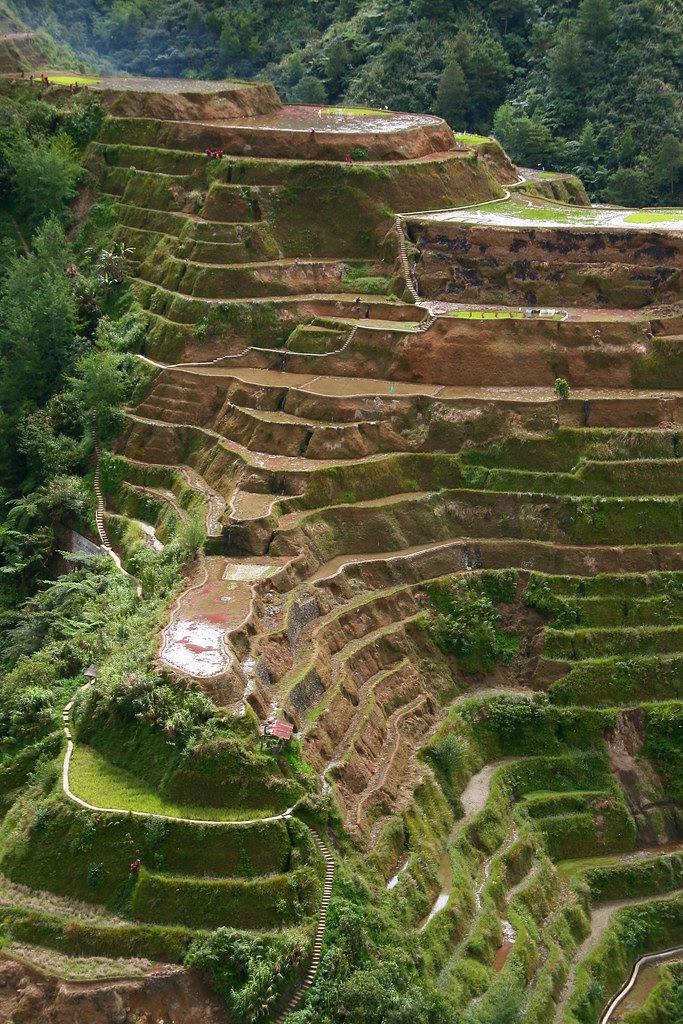 Banaue rice terrasses, Unesco world heritage