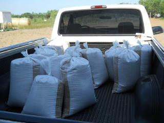 2012 Wheat Crop in Sacks