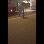 החדשות - עימות אלים על רקע גזעני בבית שמש: הנערים התגרו, הנהג... - mako
