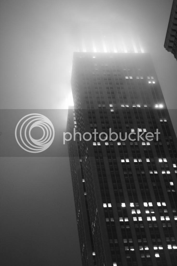 photo _MG_9551_zps8600c5bf.jpg