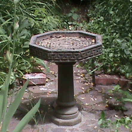 Bird Bath at the Lucky Mojo Curio Company