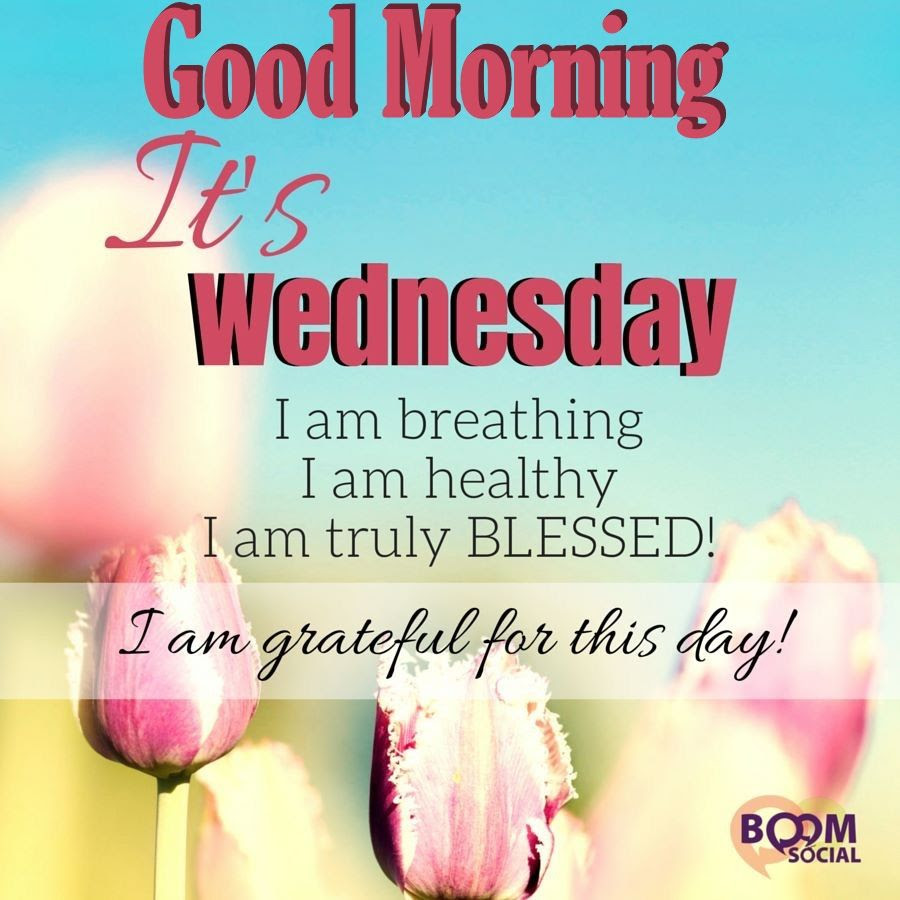 Good Morning Its Wednesday Pictures Photos And Images For Facebook