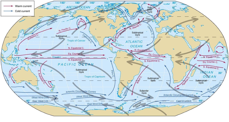 ocean currents cold currents warm currents