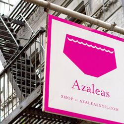 AzaleasNYC.com