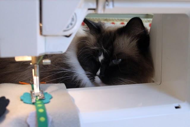 My sewing sidekick