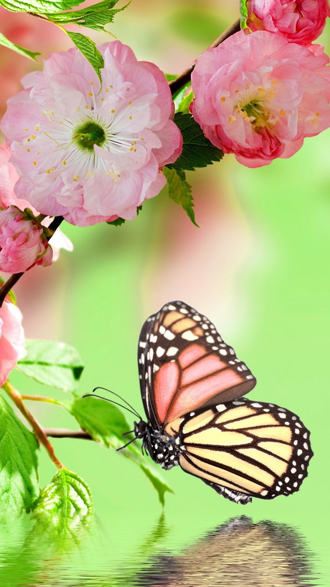 Aesthetic Tumblr Monarch Butterfly Iphone Wallpaper ...