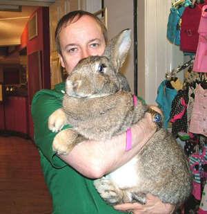http://www.synthstuff.com/mt/archives/giant-rabbit.jpg