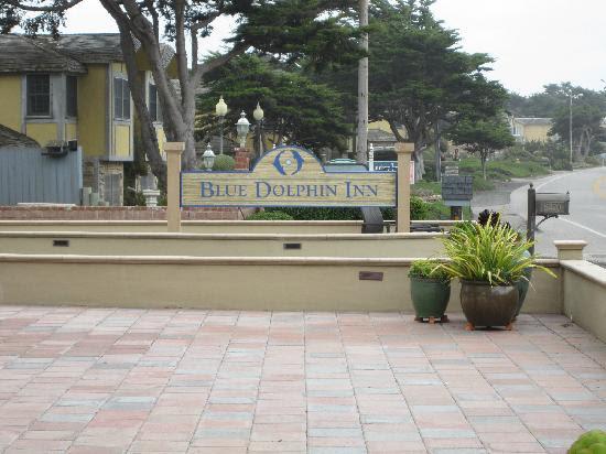 Slab Granite Countertops 2011