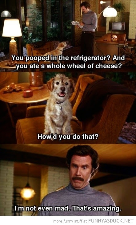 Will Ferrell Movie Quote Quote Number 695041 Picture Quotes