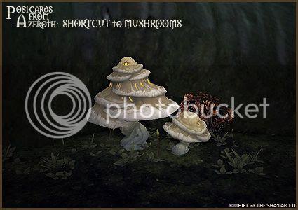 PostcardsFromAzeroth.com: Shortcut to Mushrooms