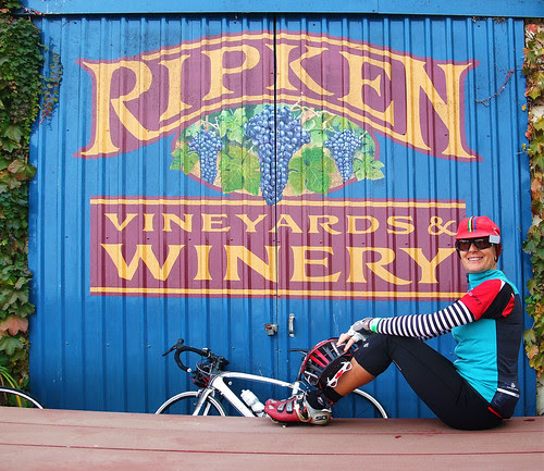 Giro d' Vino 2013 Tricia at Ripkin