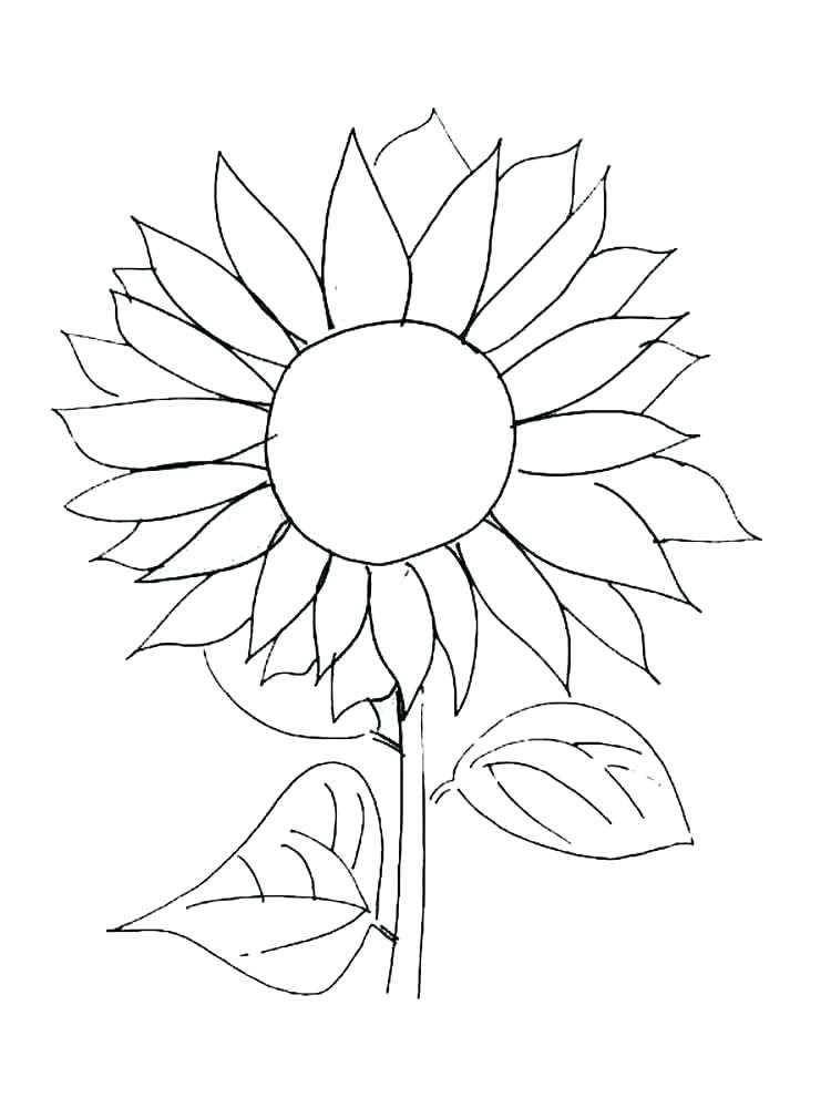 Van Gogh Sunflowers Coloring Page at GetColorings.com ...