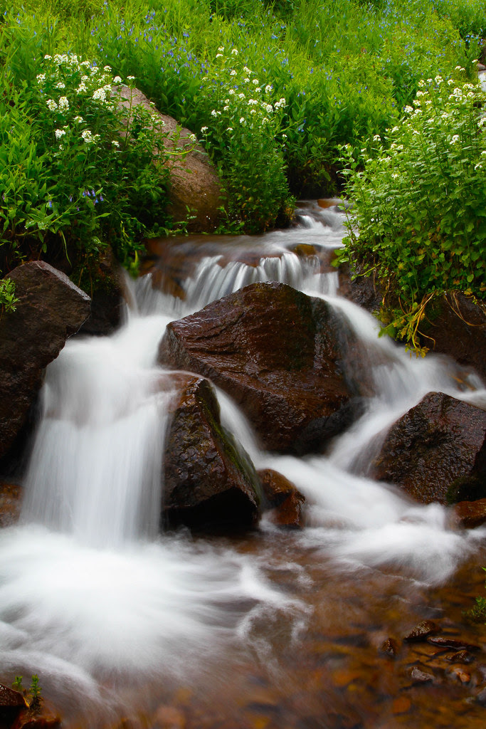 Griffith Creek-1.JPG