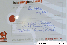 Daniel's hair locks at Comic Relief: Red Nose Day auction