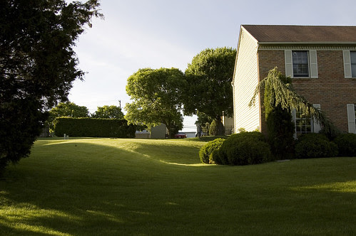 Perfect Lawns.