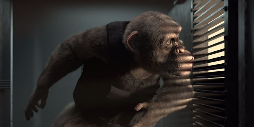C.I.Ape (2021) English Full Movie Watch Online