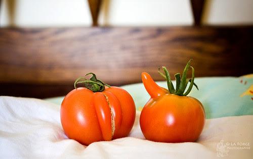 tomatosex