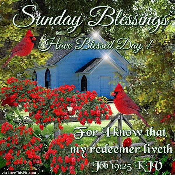 Sunday Blessings With Bible Verse Pictures Photos And Images For