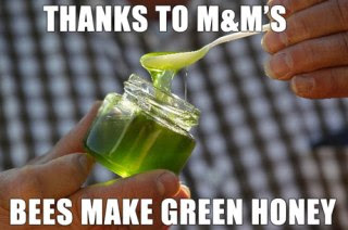Bess-Make-Blue-and-Green-Honey.jpg