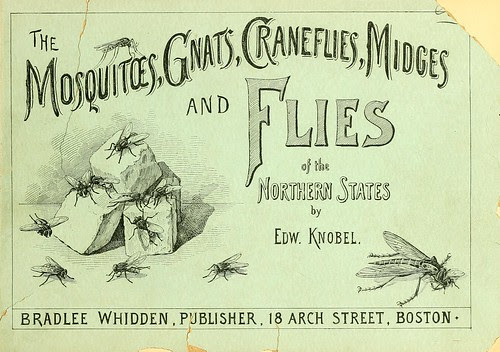 Mosquitoes, gnats, craneflies, midges and flies of the northern states, by Edward Knobel. 1897 (biodiversity)