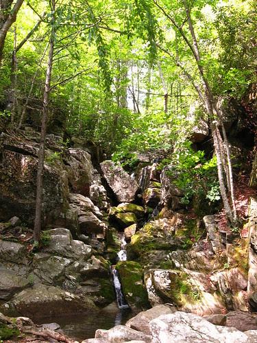 White Rock Falls Trail