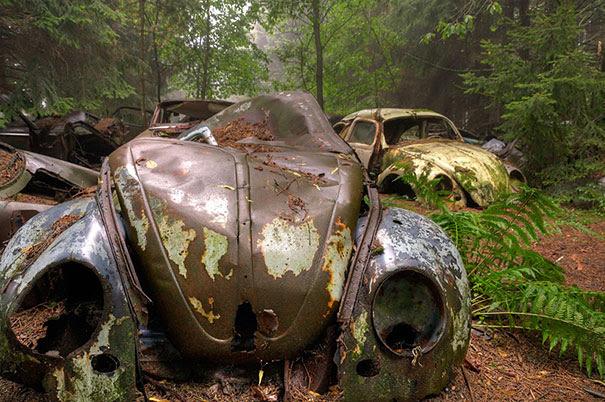 Chatillon-car-cemitério abandonado-carros-cemitério-Bélgica-2