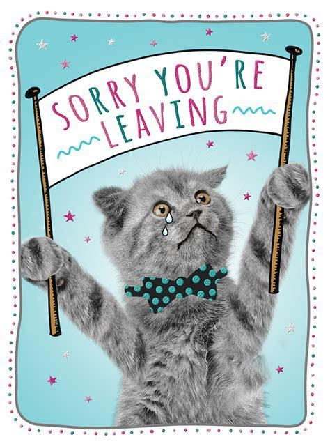 Sorry You?re Leaving ? Kitten [Extra Large Card]   Cards