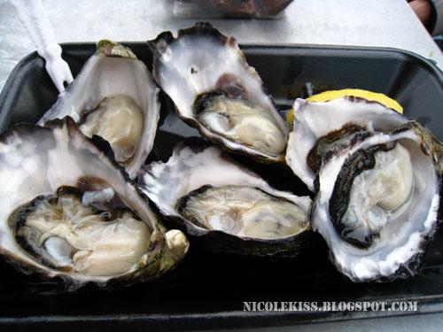 my fresh oysters