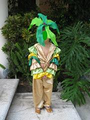palmier1