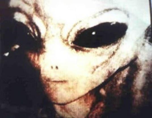 Resultado de imagen de grises extraterrestres