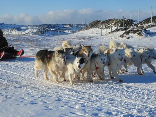 2015-03-11-1426110631-1684242-Greenland575.JPG