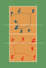 Posições no Voleibol