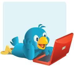 passarinho twitter