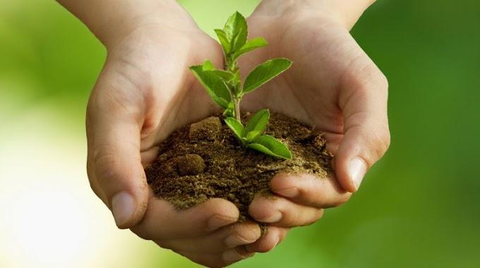 Из регионов СКФО только КБР и Северная Осетия ухудшили позиции в экологическом рейтинге
