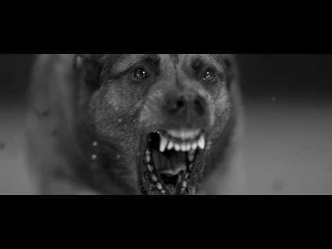 Woodkid - Iron:歌詞+翻譯