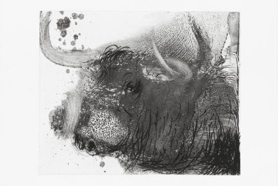 Obra de inspiración taurina de Miquel Barceló