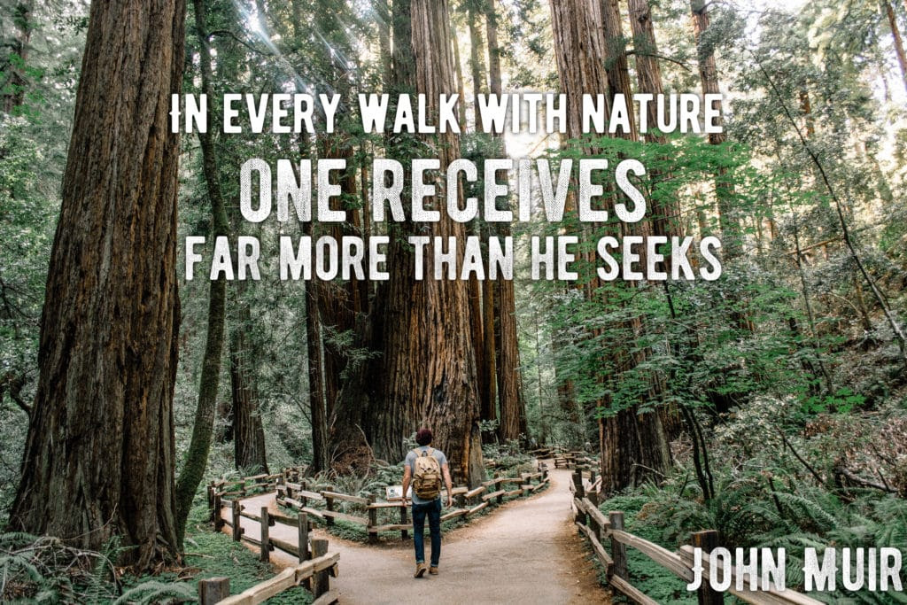 10 John Muir Quotes To Inspire You To Take A Muir Woods Tour