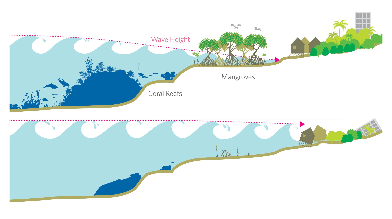 wave-height-coastal-buffers