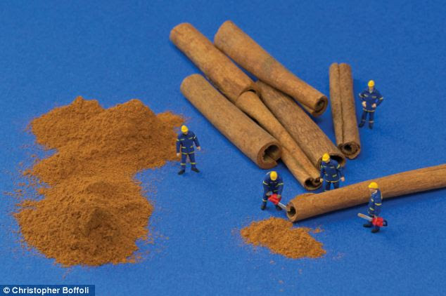 The spice guys: Chainsaws make short work of these cinnamon sticks. But sweet little dust heaps are piling up