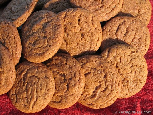 Little Molasses Ginger Spice Snaps