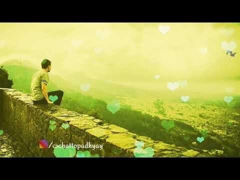 Bangla heart touching status video download (filhaal bengali version)