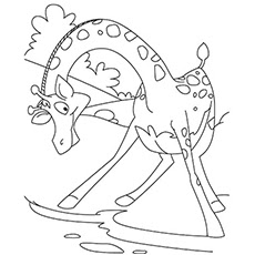 giraffe coloring pages for kids at getdrawings  free download