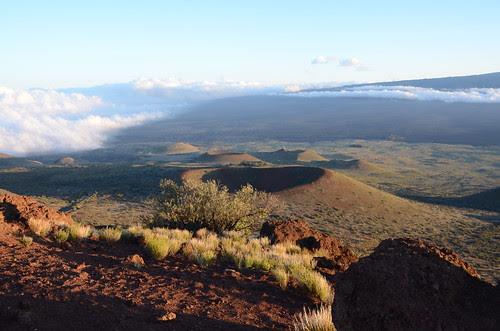 Hawaii 615