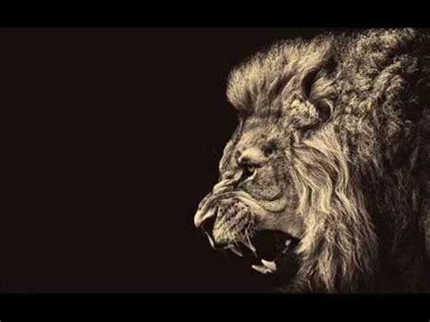 motivational speech  lion edition  youtube